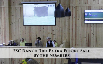 FSC Ranch 3rd Extra Effort Sale – By the Numbers