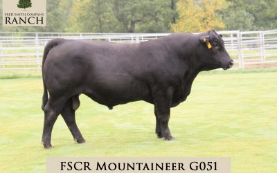 FSCR MOUNTAINEER G051 in the 2020 Fall Sale!